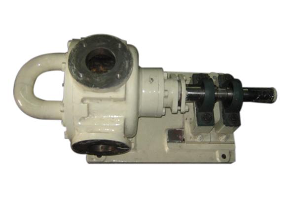Eccentric Rotor Gear Pump supplier